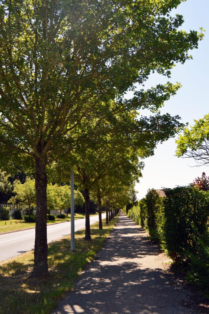 Avenue du golf à Salouël